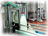 Завод молока для переработки 1 тонны молока в смену
