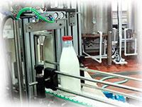 Завод молока для переработки 2 тонны молока в смену